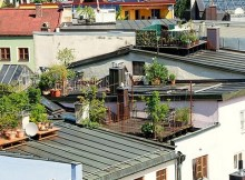 Starting an urban rooftop garden
