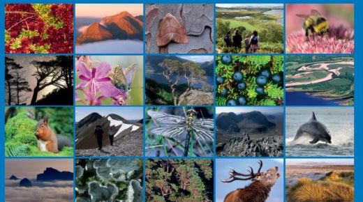 Ecosystem Services and Gaelic report published Pt2