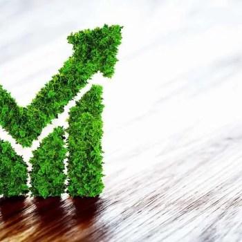 sustainability risk management