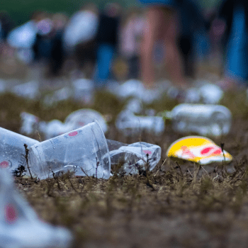 plastic littered on grass