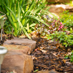 sustainable landscaping tips