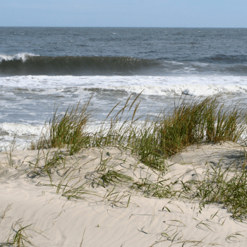 clean water jersey shore
