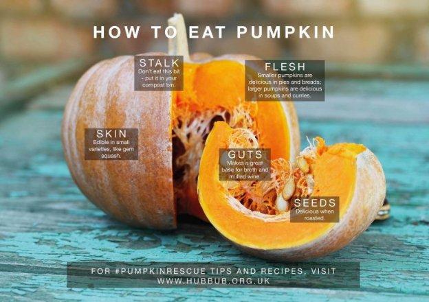 how-to-eat-pumpkin