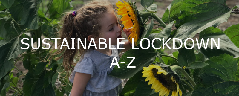 Sustainable lockdown a-z banner