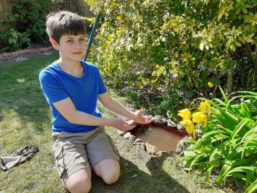 Boy in a garden next to a pond