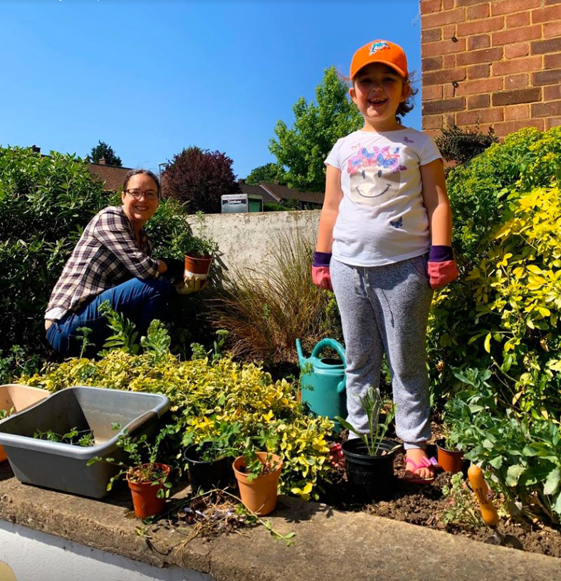 abbotts ave planters