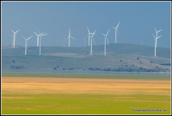 Looking across a largely empty Lake Goerge to a large wind farm, blue skies in the background.