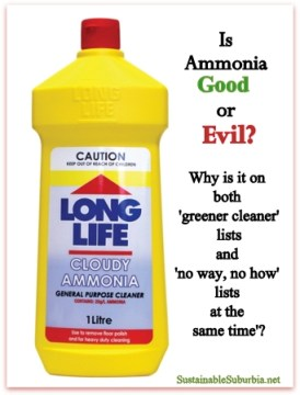 Is ammonia good or evil?