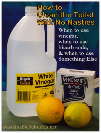 How to clean the toilet with no nasties: when to use vinegar, when to use bicarb soda and when to use something else