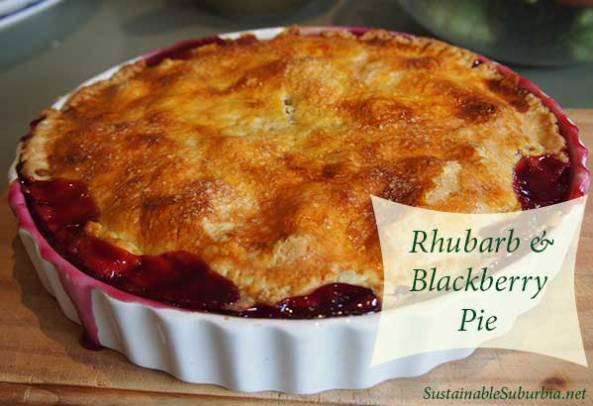 Rhubarb and blackberry pie | SustainableSuburbia.net