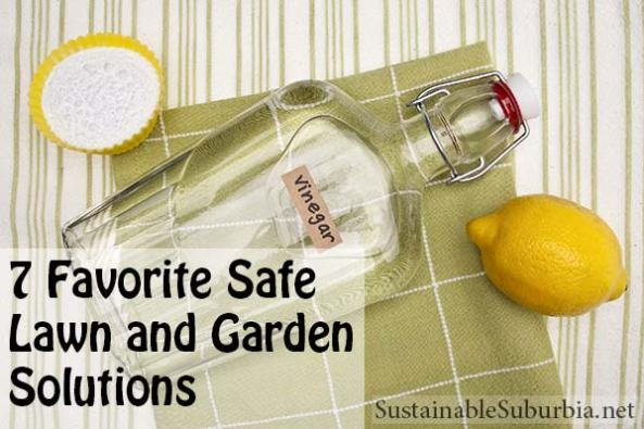 7 Favorite Safe  Lawn and Garden  Solutions | SustainableSuburbia.net