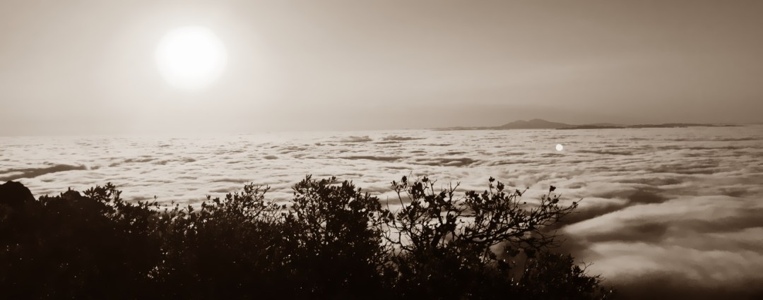 Sustainable Systems Sunrise