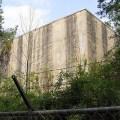 dawson forest nuclear