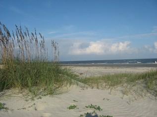 Jekyll Beach georgiainfo.galileo.usg.edu