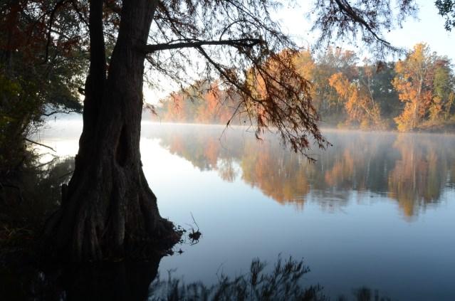 Lower Flint River.jpg