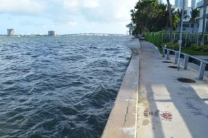 Miami Beach High Tide