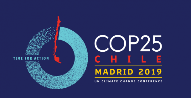 Reflections on COP 25 by Carol Phelps