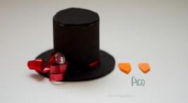 pico y sombrero