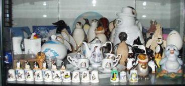collección-pingüinos-museo