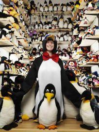 Records-Guinness-penguin