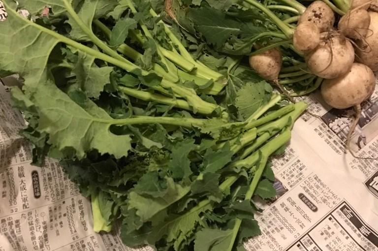春の野菜を使った超簡単パスタ