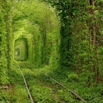 すてきだなあ~!愛のトンネル(恋のトンネル)で愛を誓う