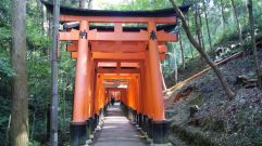 Fushimi Inari Taisha by Erin Grace, CC BY-SA 2.0