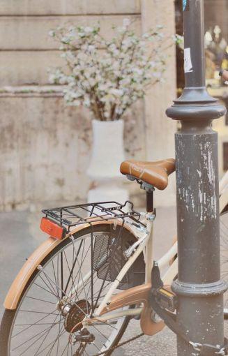 bike 10