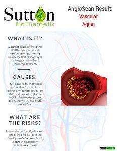 thumbnail of Vascular Aging