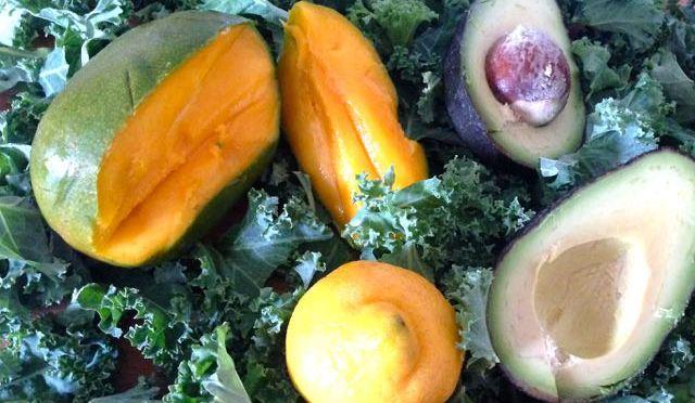 Salaatti nro 59 – Pehmeä vihersmuutti lehtikaalista