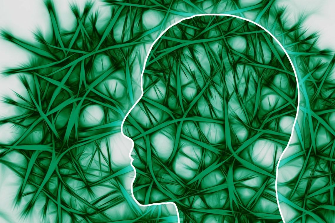 zenuwbanen, hersenen, bewegen