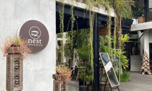 Cafe Nest Coffee & Donuts