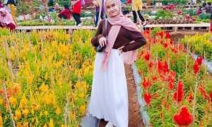 Tapos Garden Coffee & Eatery Bogor