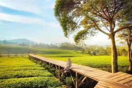 Wisata Nuansa Riung Gunung