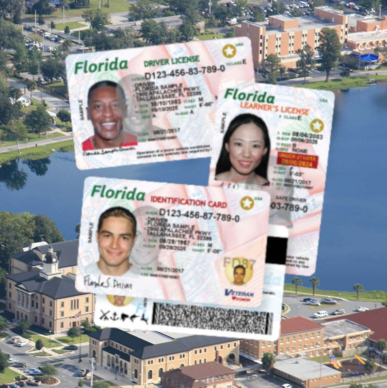 Example of Florida Driver Licenses