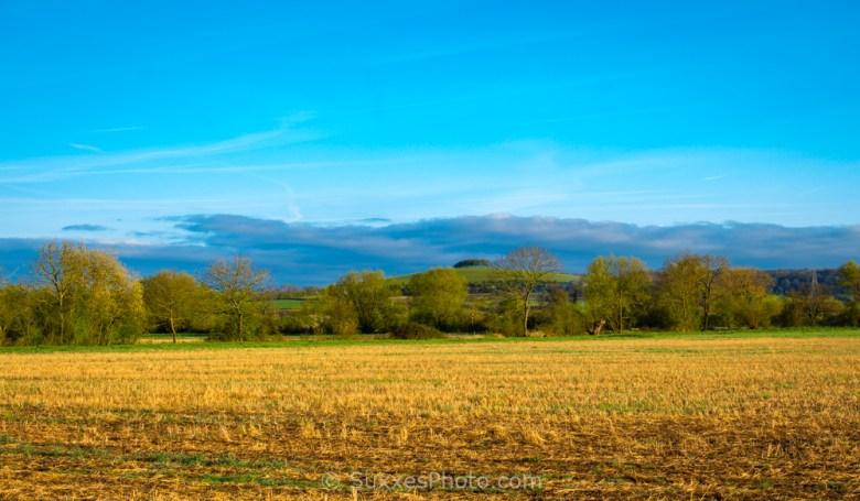 Ashleworth Meadows