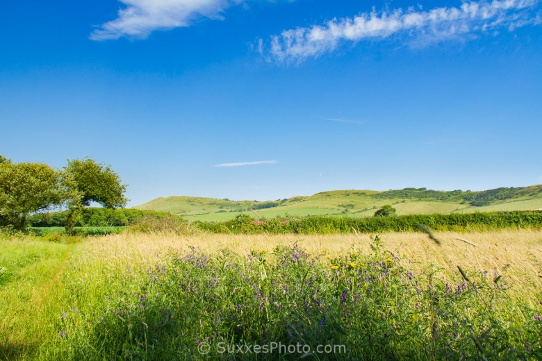 kimmeridge countryside dorset