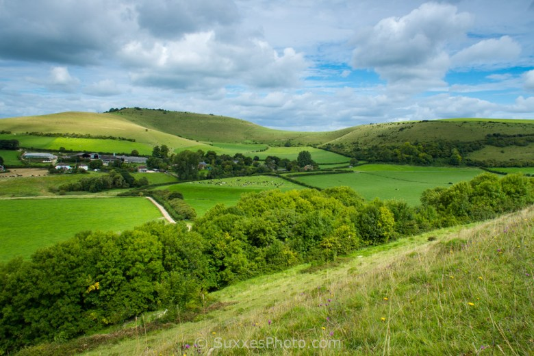 Melbury Hill view