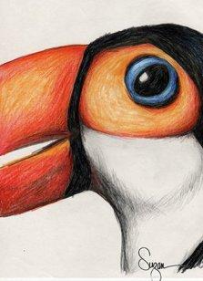 Color Pencil Tucan