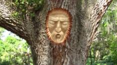 Keith-Jennings-tree-spirits-720x405