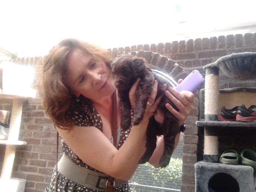 Rufus als 6 weken oude pup