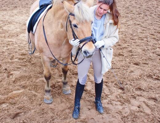 paardrijden sport