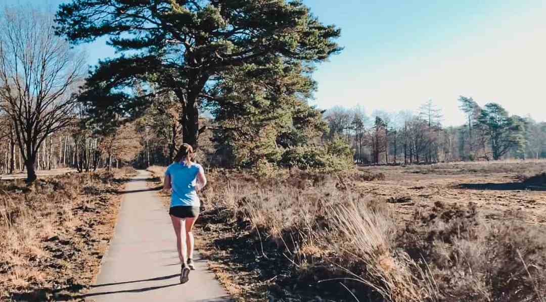 hardlopen veluwe