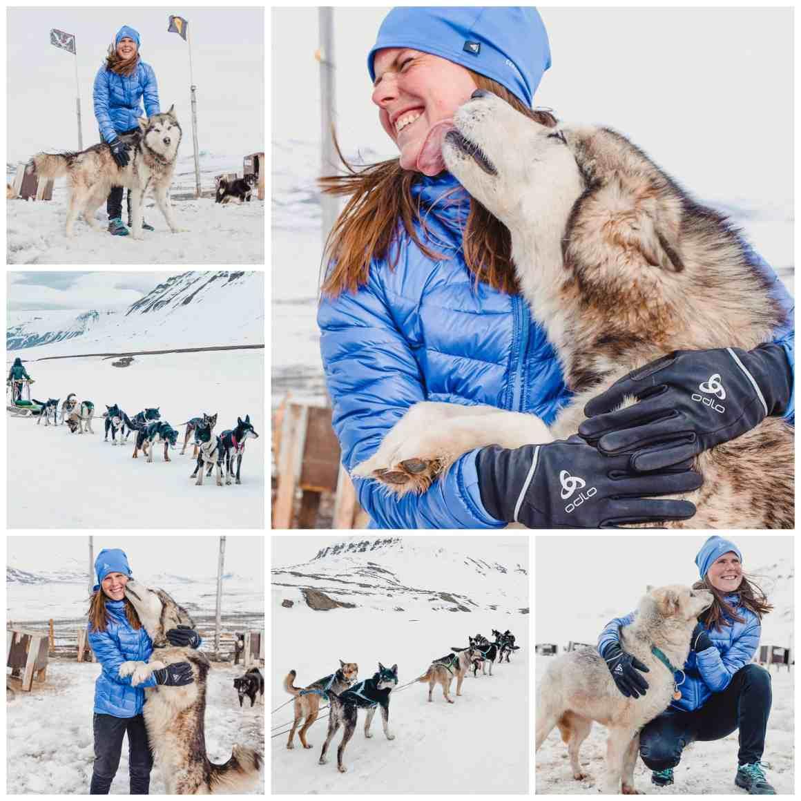 husky tour spitsbergen