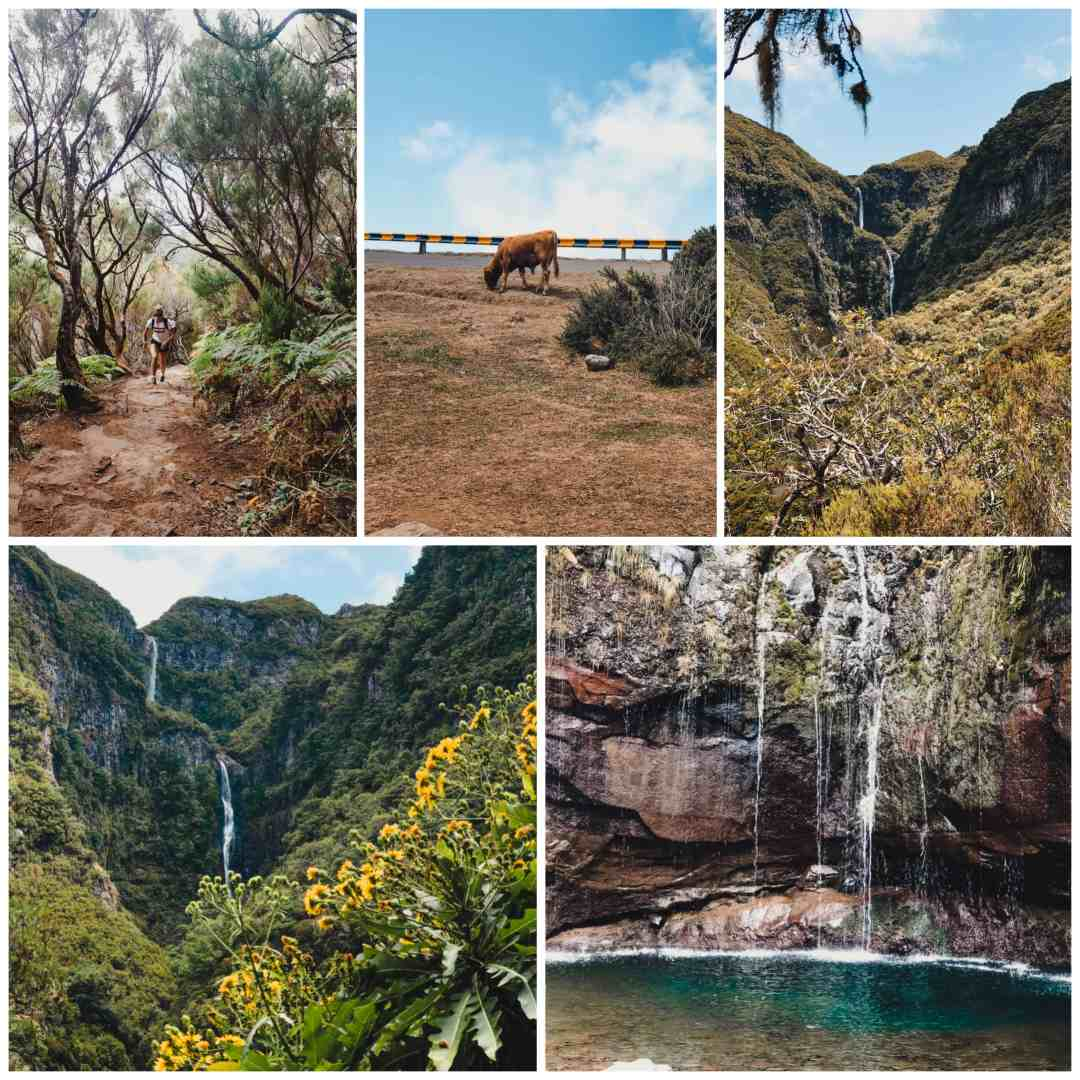 risco waterfalls and 25 fontes madeira