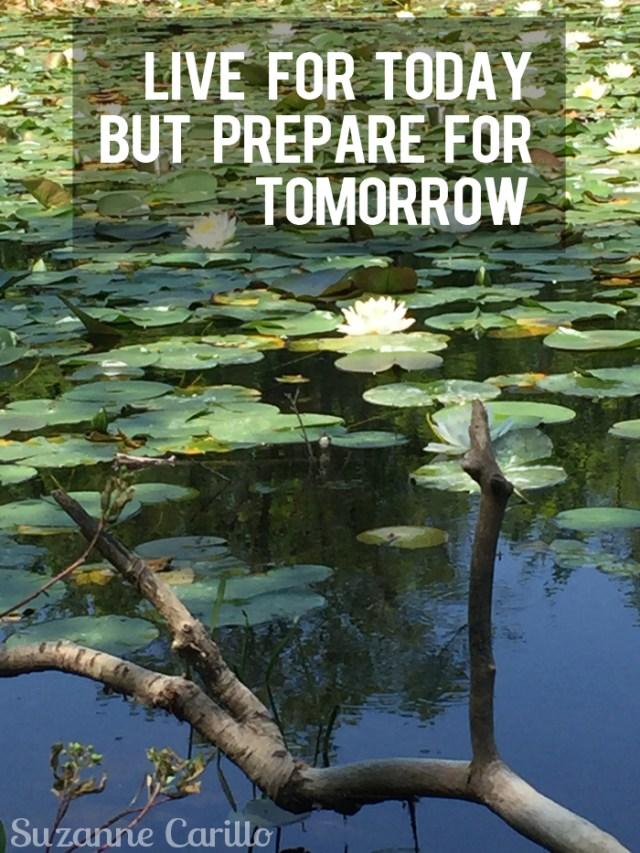 live for today but prepare for tomorrow suzanne carillo
