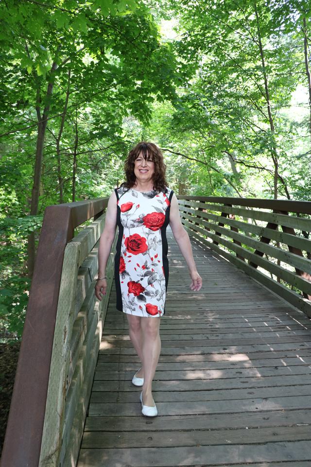 ally park bridge