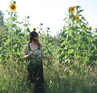 Walking amongst sunflowers