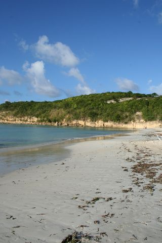 Dickinson beach antigua