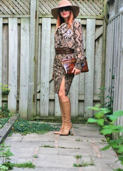 Altuzarra targete snakeskin pencil skirt and tie blouse suzanne carillo style files